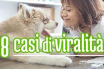 thumb-contenuti-virali