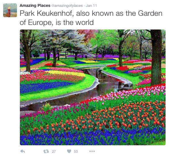 esempio foto paesaggio virale